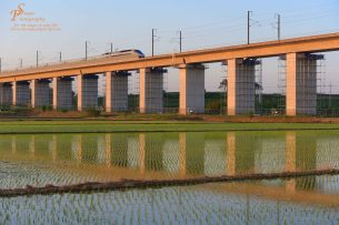Bullet train over the rice patties, South Korea
