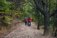 Korean hikers along one of the nature trails that surrond the temple
